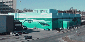 West Terminal - Wyland Painted walls